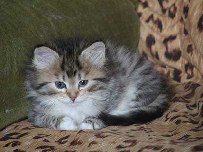 Olesija 9.9.2007