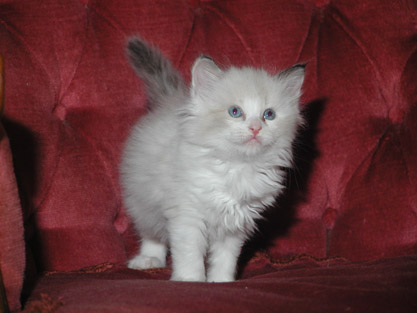 Zoe 20.07.2009